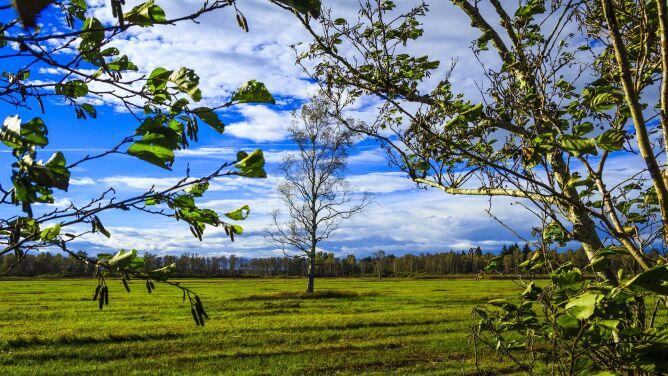 Prognoza pogody na dziś: <br />czeka nas słoneczny dzień